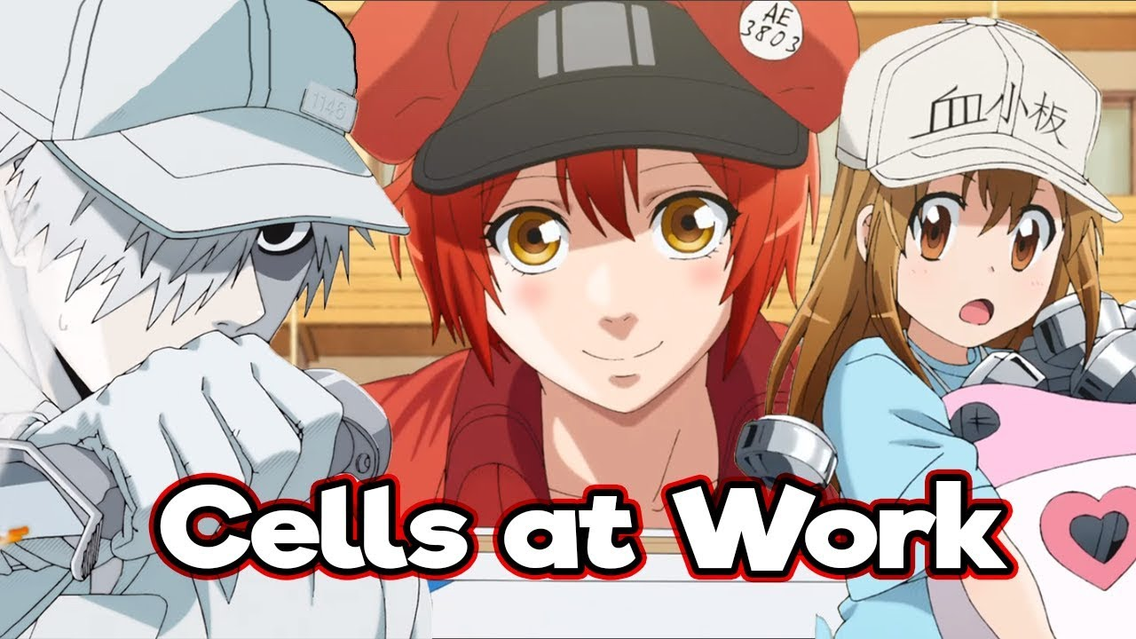 Cells at Work! Review 2018 TV-Show Series Cast Crew Online